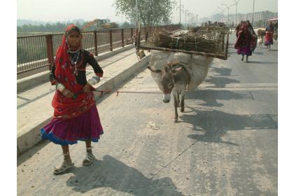 sanu-babu-rozhovor-nabytek-obleceni-indie-nepal-podnikani-ve-svete-10-.jpg