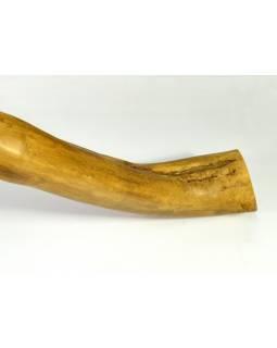 Didgeridoo pro pokročilé, javor, 177cm