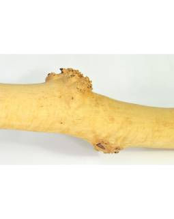 Didgeridoo, koncertní nástroj, bříza, 187cm