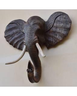 Sloní hlava vyřezaná ze dřeva stromu suar, 113x28x103cm