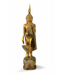 Narozeninový Buddha, pondělí, teak, zlatá patina, 35cm
