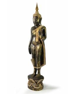 Narozeninový Buddha, pondělí, teak, černo-zletá patina, 50cm